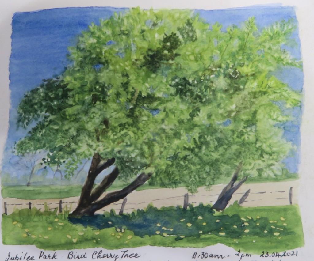 Fig. 4 Bird Cherry Tree 2021 Watercolour